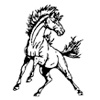 logo Immaculate Boys Basketball Tournament: Class S Bracket Released