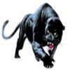 logo OHPlatt Connecticut High School Football Playoff Bracket: Class L